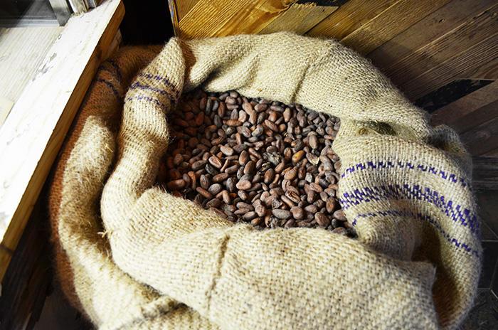 tutti-cacao-カカオ豆.jpg