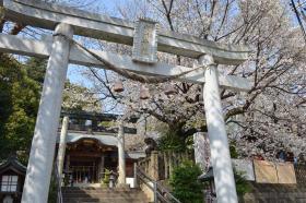 鳩ケ谷総鎮守 氷川神社