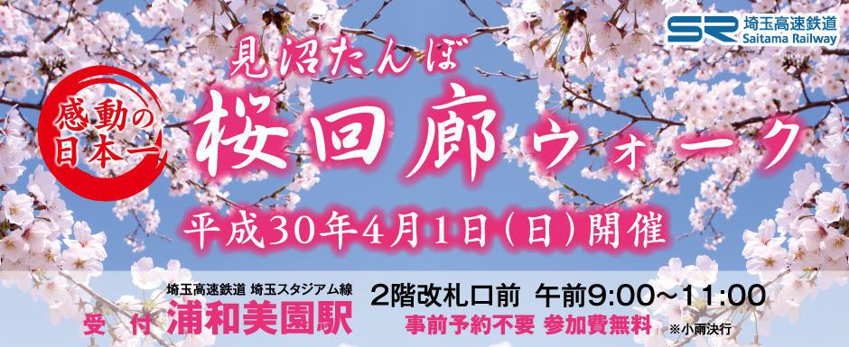 桜回廊ウォーク