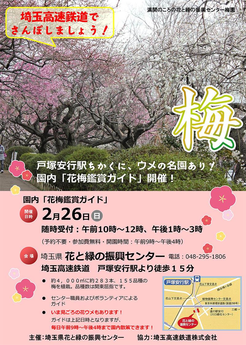 花梅観賞ガイド
