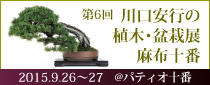 【終了】第6回 川口安行の植木・盆栽展 麻布十番