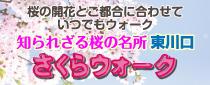 知られざる桜の名所東川口「さくらウォーク」