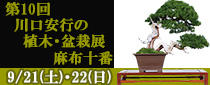 SR東京メトロパスを使って「第10回 川口安行の植木・盆栽展 麻布十番」へ行こう