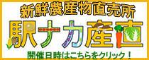 新鮮農産物直売所 『野菜収穫祭 駅ナカ産直』