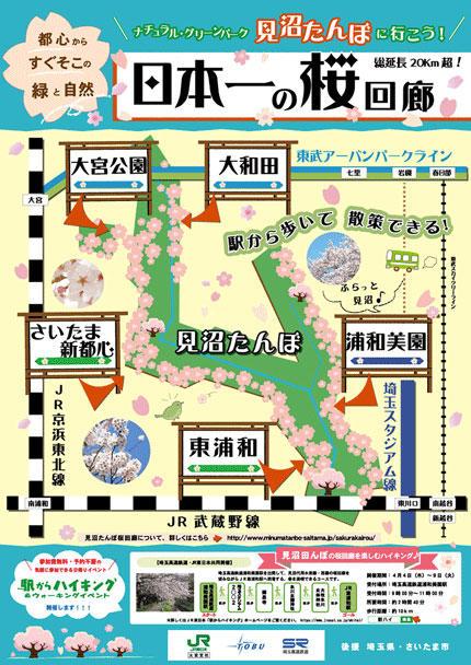 見沼たんぼハイキング「日本一の桜回廊」
