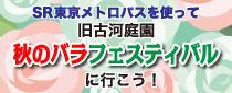 SR東京メトロパスを使って旧古河庭園「秋のバラフェスティバル」に行こう!