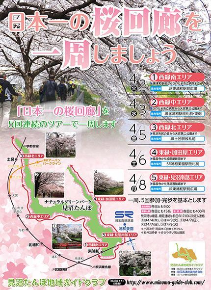 日本一の桜回廊を一周しましょう