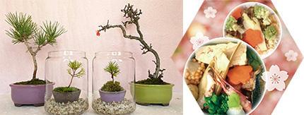 元郷さんぽ 盆栽と弁当