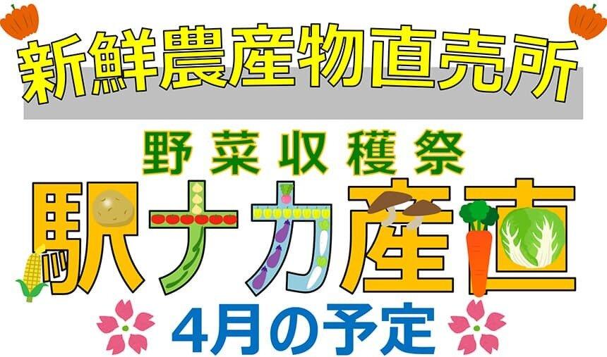 ekinakayasai-202104.jpg