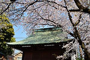 鳩ケ谷氷川神社