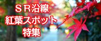 【終了】SR沿線 紅葉スポット特集