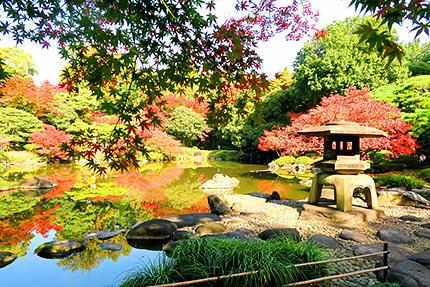 旧古河庭園 紅葉