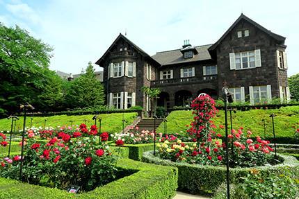 旧古河庭園(春のバラフェスティバル)