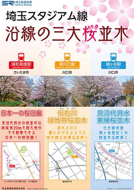 埼玉スタジアム線 沿線の三大桜並木