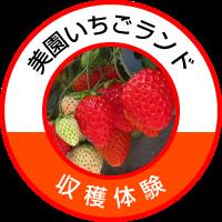 misono-ichigo-icon.png