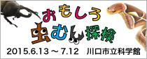 【終了】特別展「おもしろ虫むし探検」