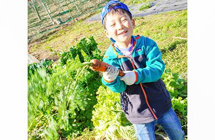 栽培指導つき体験型農園(若谷さん)