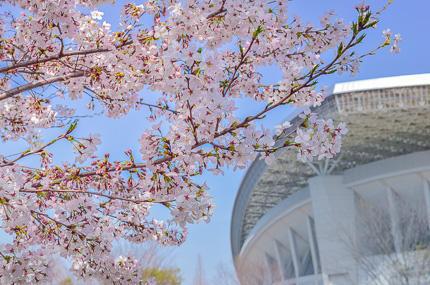 埼玉スタジアム2○○2公園