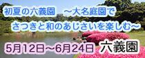 SR 東京メトロパスで行く六義園「初夏の六義園~大名庭園でさつきと和のあじさいを楽しむ~」