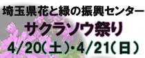 埼玉県花と緑の振興センター「サクラソウ祭り」