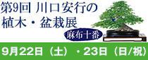SR東京メトロパスを使って「第9回 川口安行の植木・盆栽展 麻布十番」へ行こう