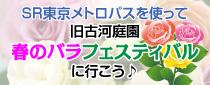 【終了】SR東京メトロパスを使って旧古河庭園「春のバラフェスティバル」へ行こう♪