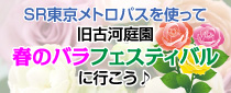 SR東京メトロパスを使って旧古河庭園「春のバラフェスティバル」へ行こう♪