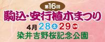 SR東京メトロパスを使って「第16回 駒込・安行植木まつり」へ行こう