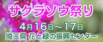 【終了】サクラソウ祭り