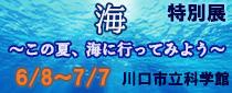 特別展「海~この夏、海に行ってみよう~」