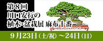SR東京メトロパスを使って「第8回 川口安行の植木・盆栽展 麻布十番」へ行こう