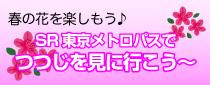 【終了】 SR東京メトロパスでつつじを観に行こう